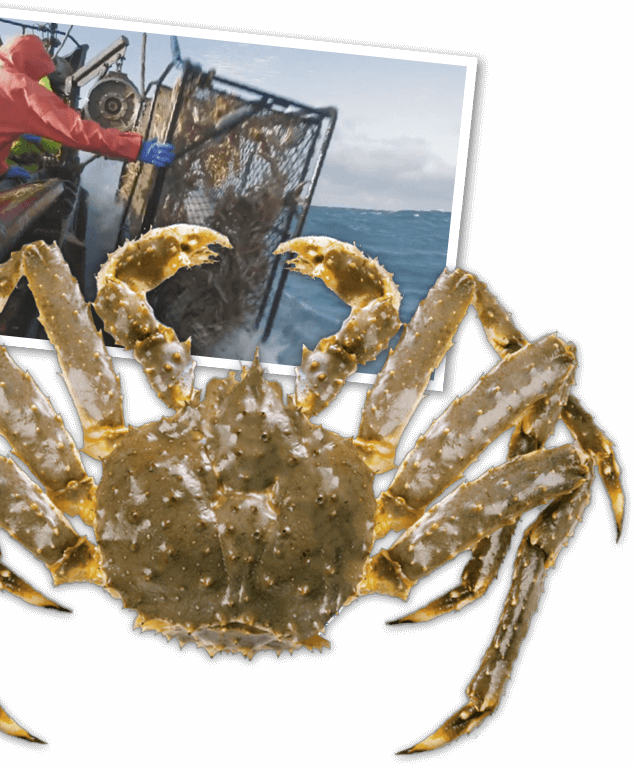 Sourcing Our Seafood | Red Lobster Seafood Restaurants